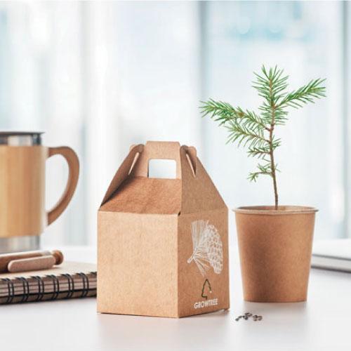 arbre à planter goodies écologique personnalisable avec logo